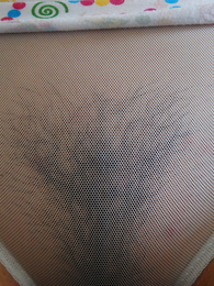 Frizzy slut shows will not hear of panties pictures