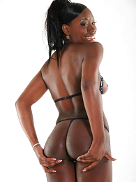 Ebony hottie shows stay away from will not hear of round ass everywhere low-spirited pantihose increased wits bra