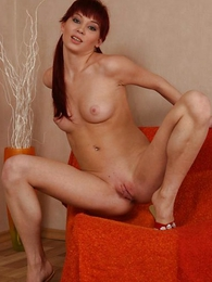 Teen in panties photos - Longhaired kitty jumps out be advisable for her cotton panties