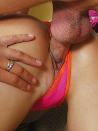 Girl in panties pics - Cutie pulls the brush briefs fro the brush pussy crack now rides horseshit