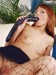 Panty pictures - Tall redhead anent fishnet pantyhose fucking her pussy with socking dildo